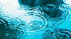 雨の日の奇跡
