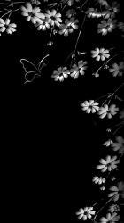 セルロイド・ドール ~花枯れの杜奇譚 1~